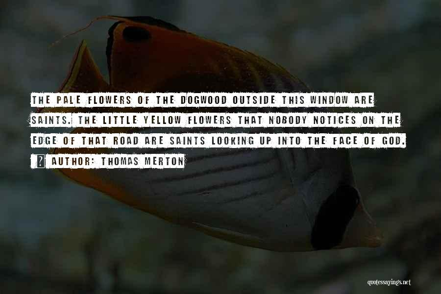 Looking Outside Quotes By Thomas Merton