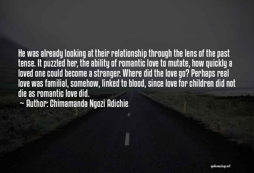 Looking Through A Lens Quotes By Chimamanda Ngozi Adichie