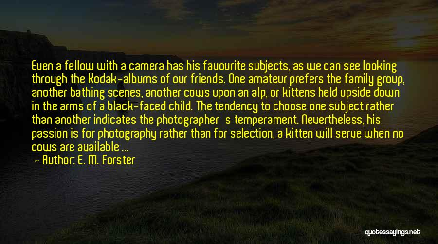 Looking Through The Camera Quotes By E. M. Forster