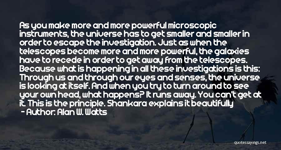 Looking Through Your Eyes Quotes By Alan W. Watts