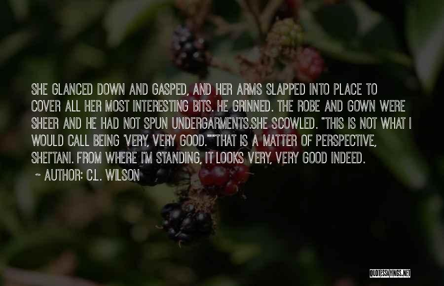 Looks Does Matter Quotes By C.L. Wilson