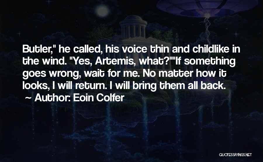 Looks Matter Quotes By Eoin Colfer