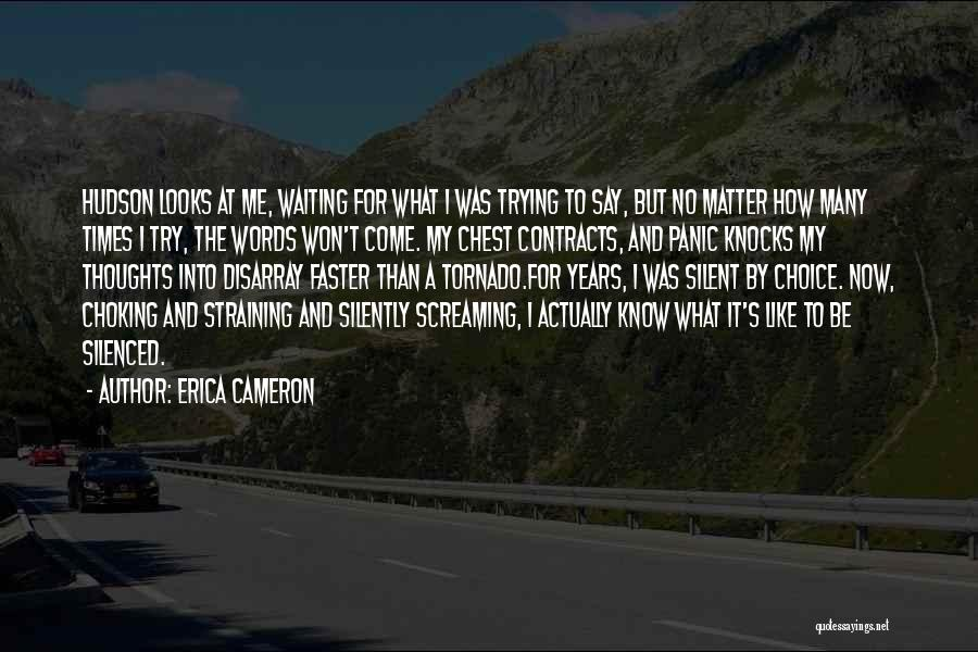 Looks Matter Quotes By Erica Cameron