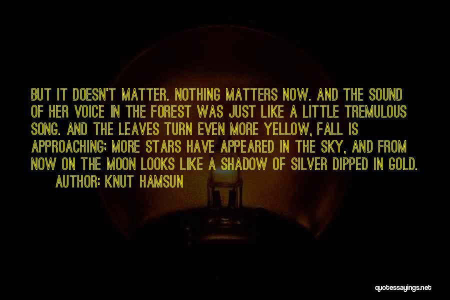 Looks Matter Quotes By Knut Hamsun
