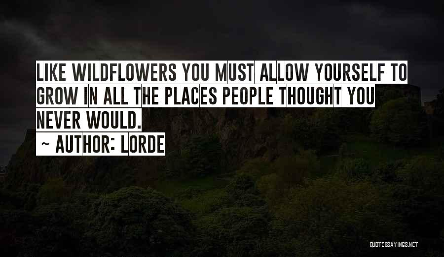 Lorde Quotes 855004