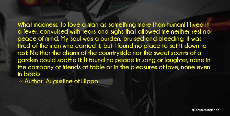 Loss Friend Quotes By Augustine Of Hippo