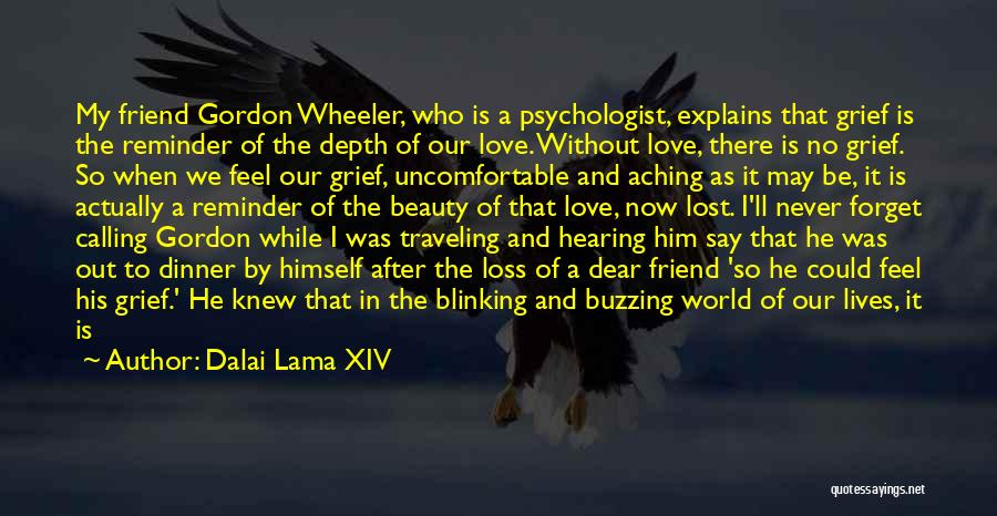 Loss Friend Quotes By Dalai Lama XIV