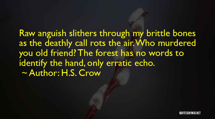 Loss Friend Quotes By H.S. Crow