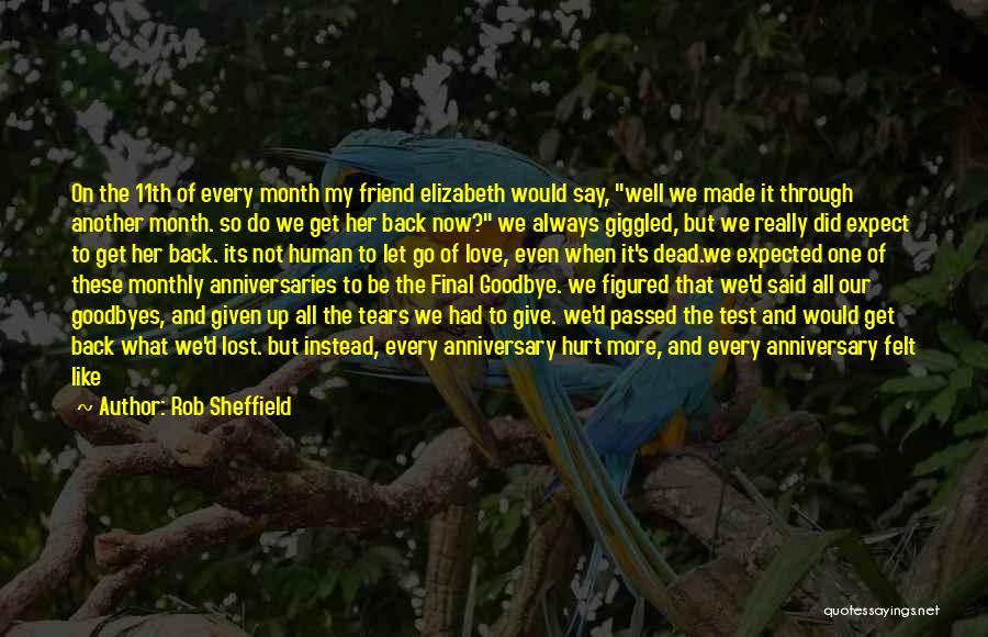 Loss Friend Quotes By Rob Sheffield