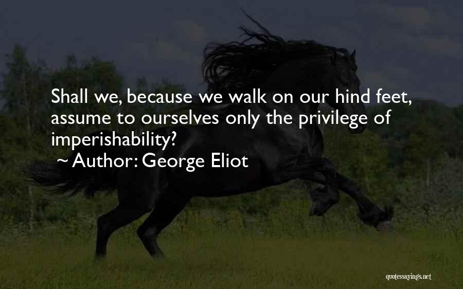 Loss Of A Pet Quotes By George Eliot