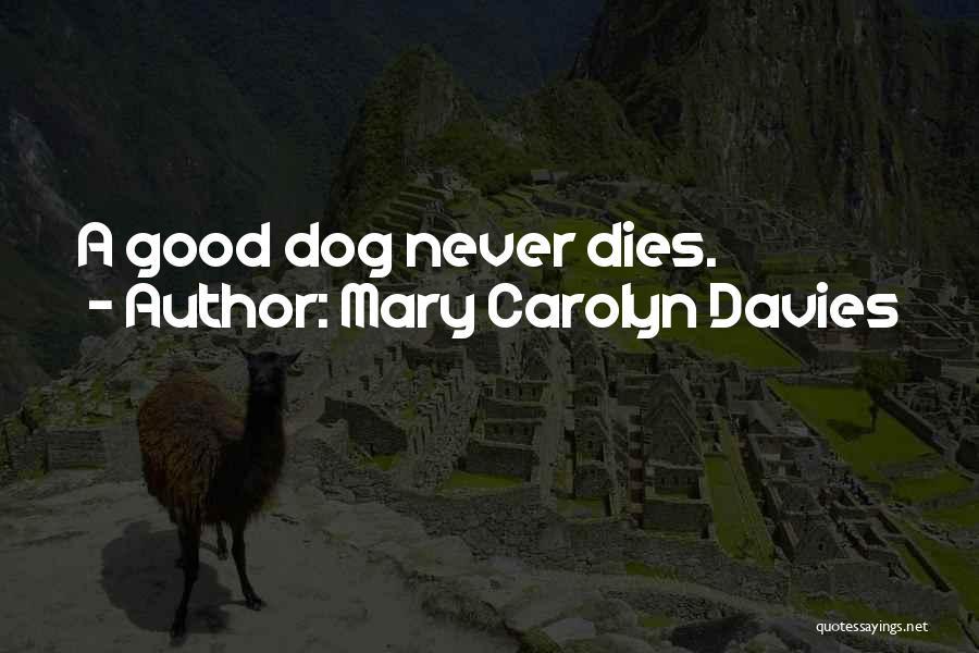 Loss Of A Pet Quotes By Mary Carolyn Davies
