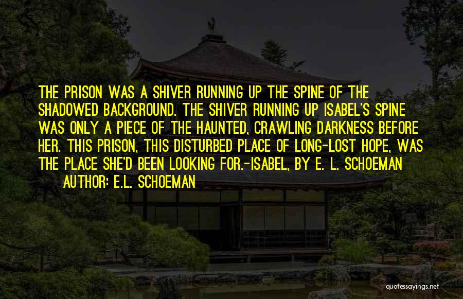 Lost Hope Quotes By E.L. Schoeman