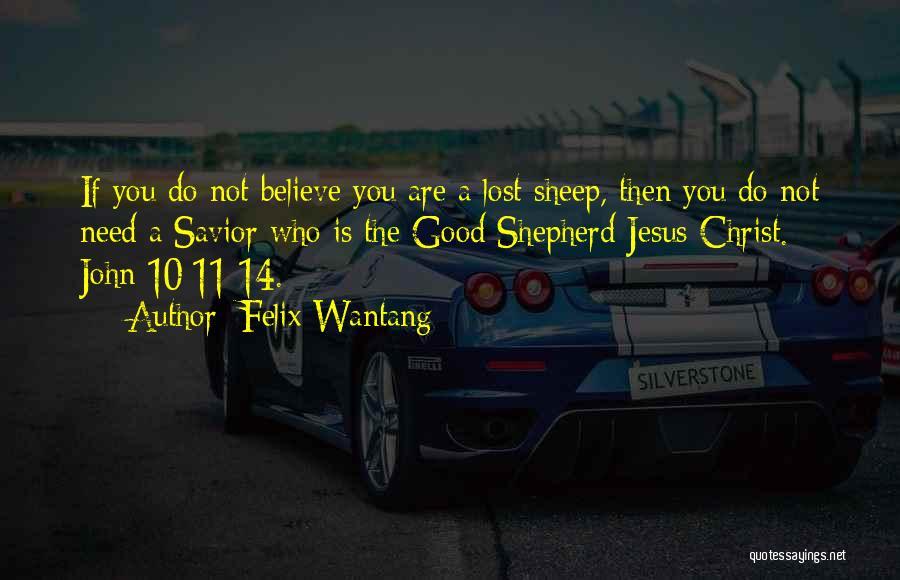 Lost Sheep Bible Quotes By Felix Wantang