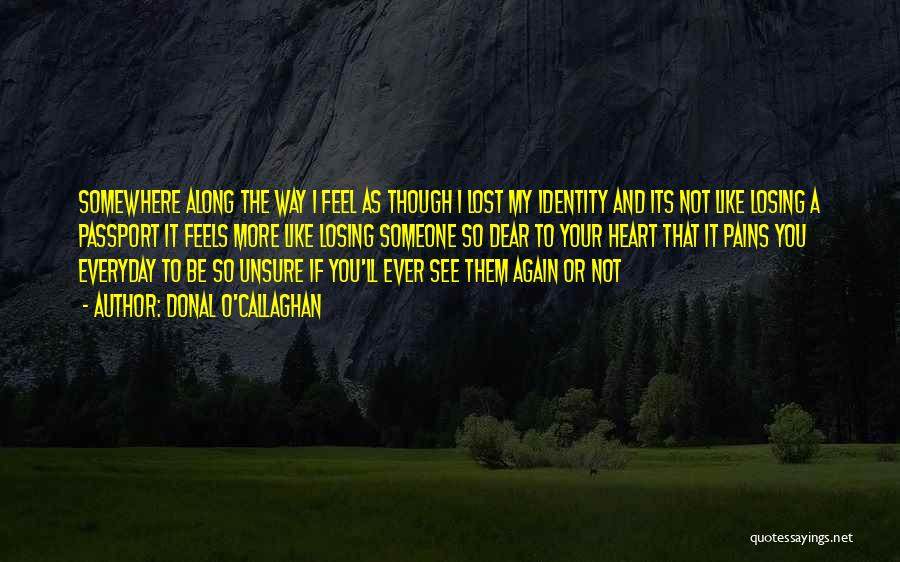 Lost Somewhere Quotes By Donal O'Callaghan