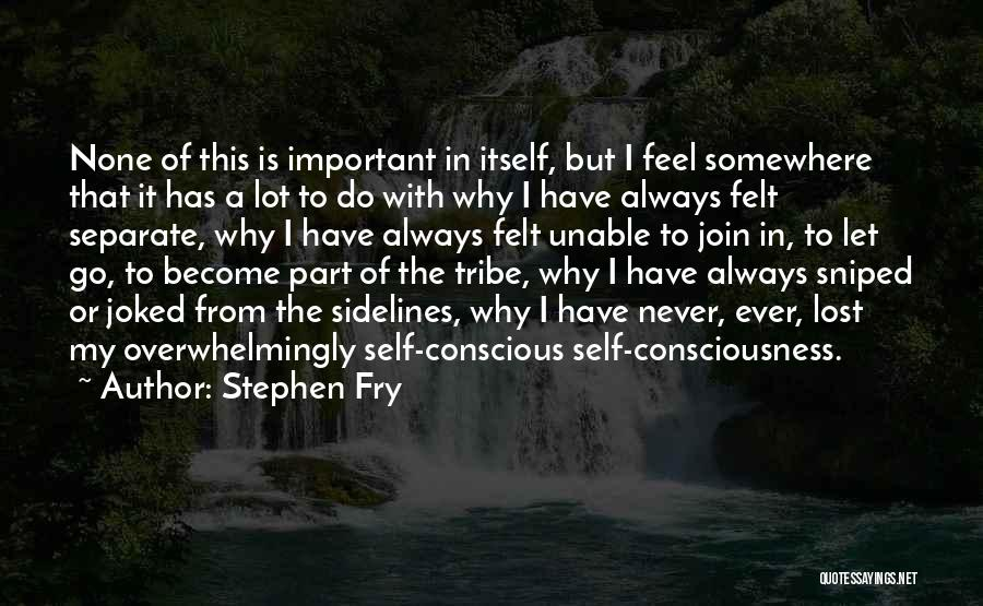 Lost Somewhere Quotes By Stephen Fry