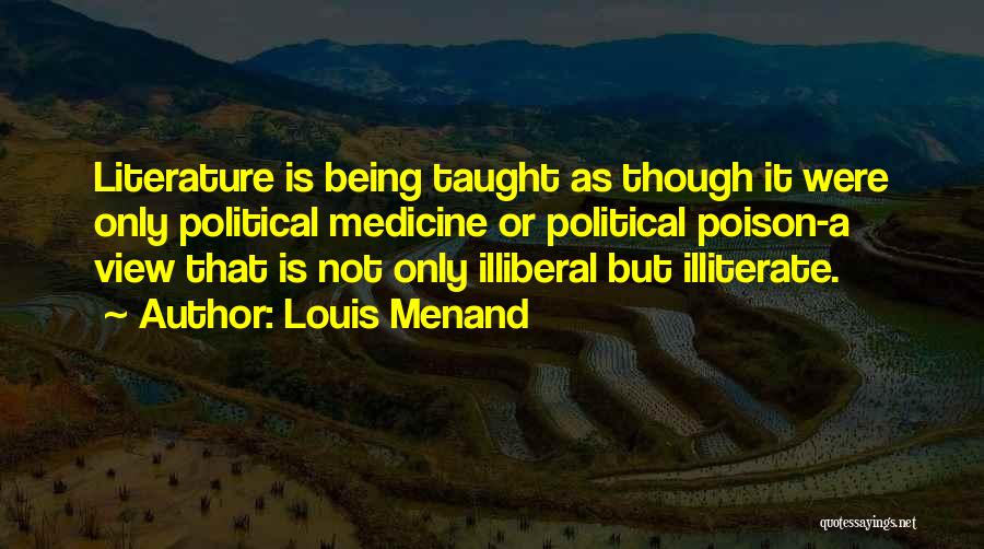 Louis Menand Quotes 2056521