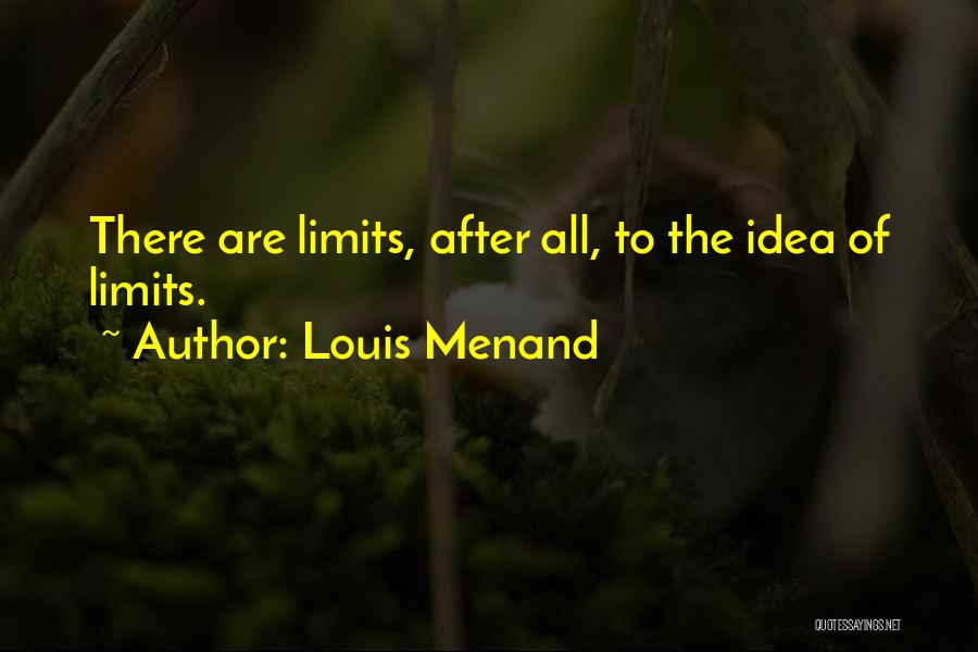 Louis Menand Quotes 906633
