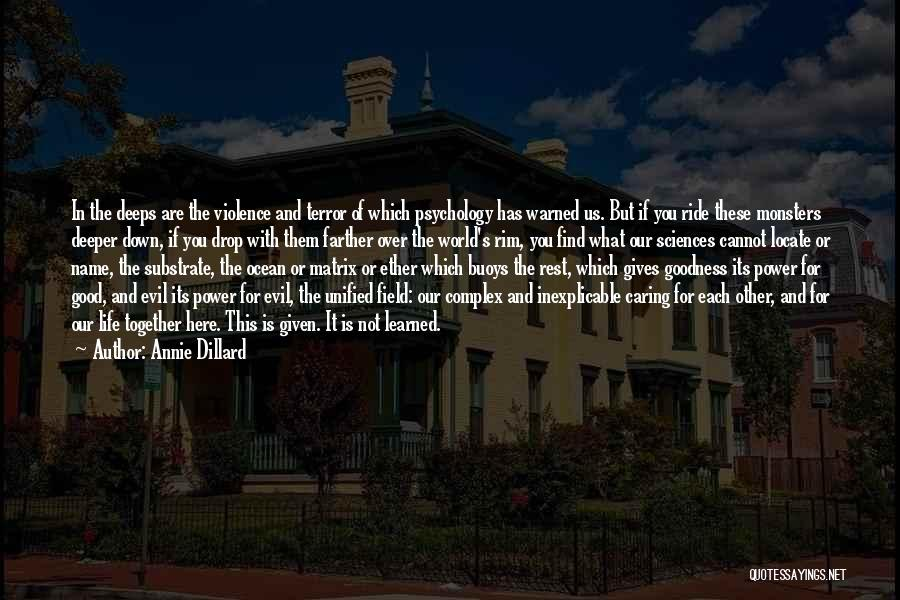 Love And Monsters Quotes By Annie Dillard