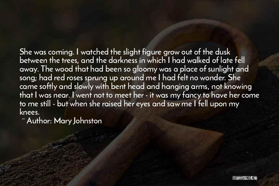 Love And Red Roses Quotes By Mary Johnston