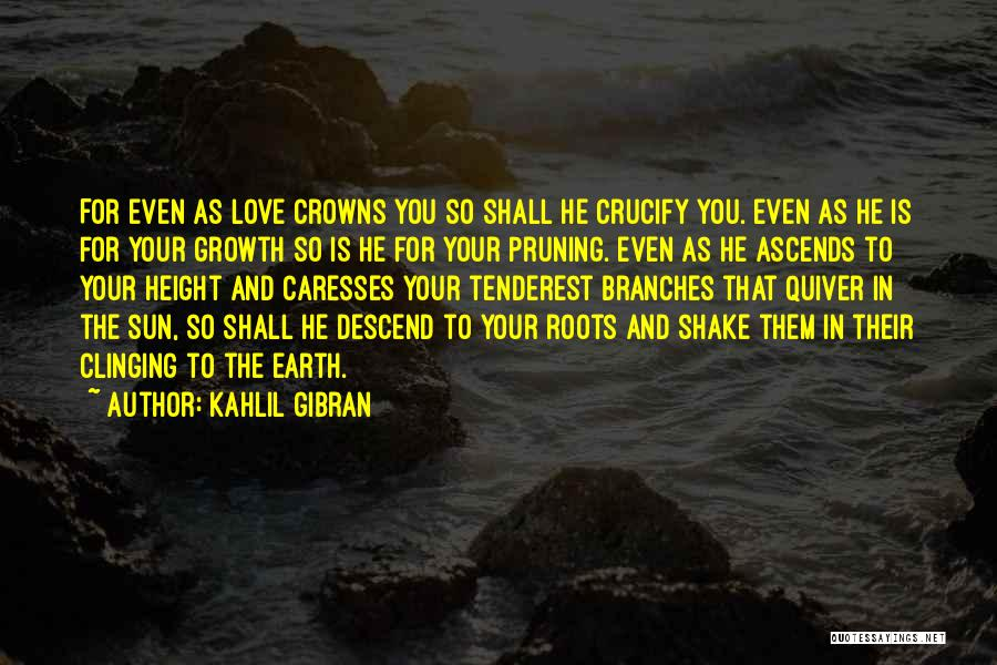 Love Branches Quotes By Kahlil Gibran