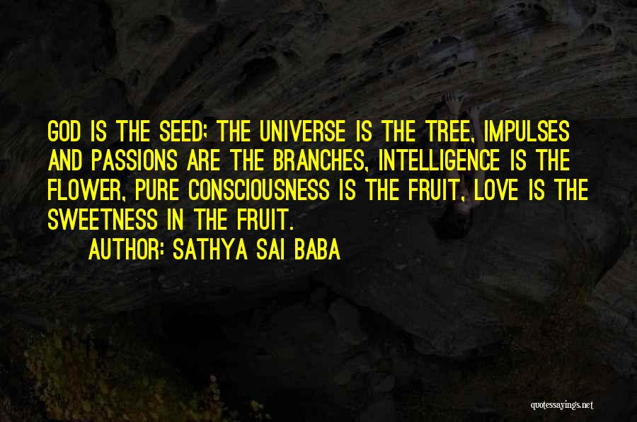 Love Branches Quotes By Sathya Sai Baba