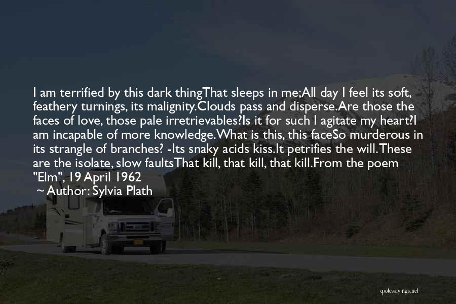 Love Branches Quotes By Sylvia Plath