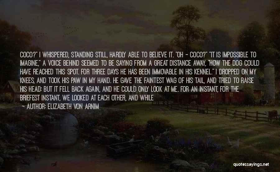 Love But Distance Quotes By Elizabeth Von Arnim