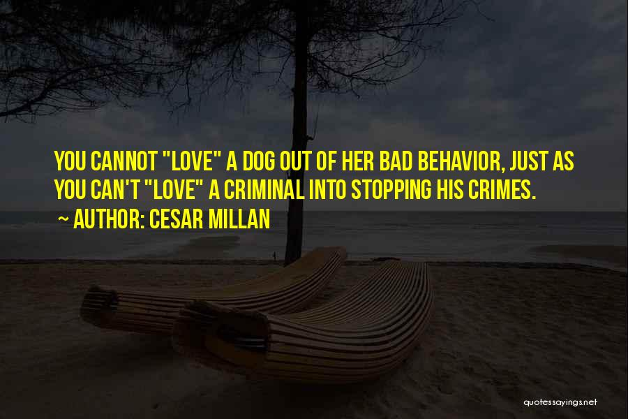 Love Criminal Quotes By Cesar Millan