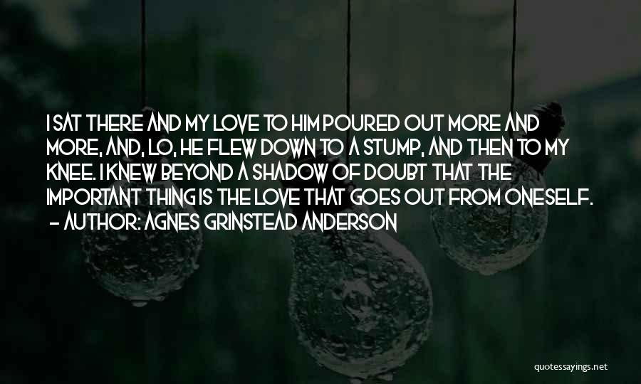 Love Goes Beyond Quotes By Agnes Grinstead Anderson
