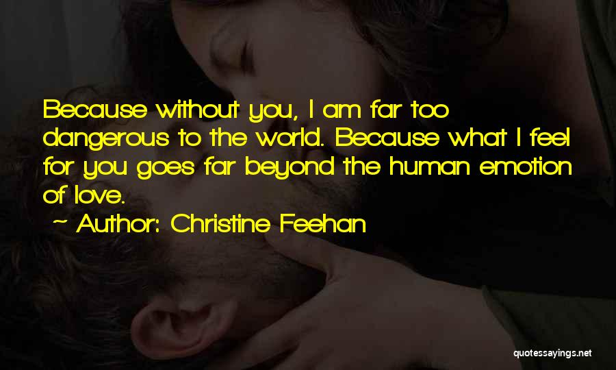 Love Goes Beyond Quotes By Christine Feehan