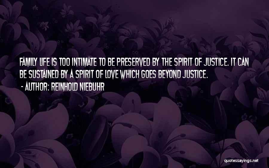 Love Goes Beyond Quotes By Reinhold Niebuhr