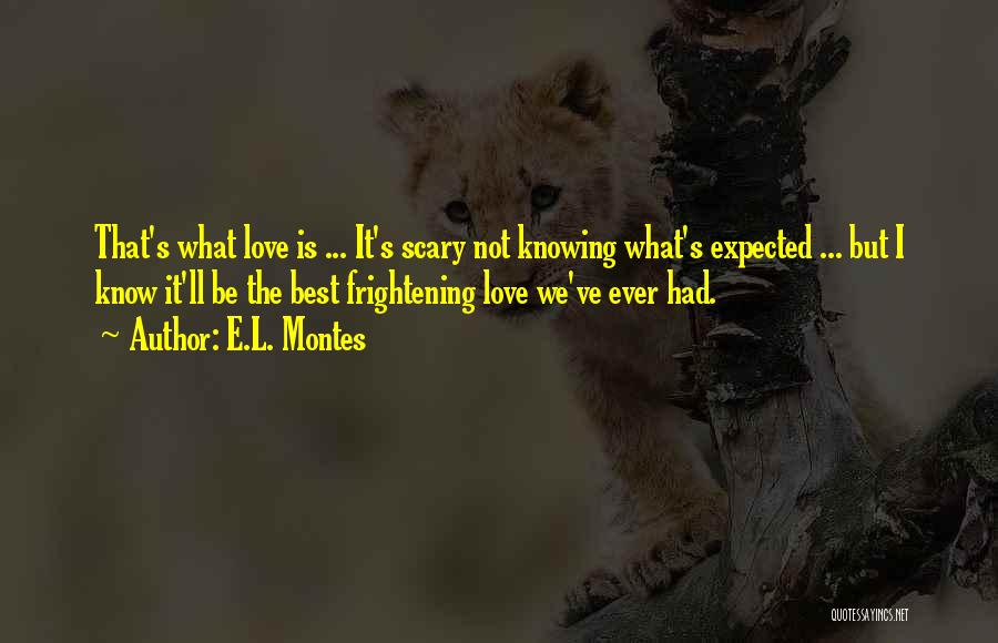 Love Is Frightening Quotes By E.L. Montes