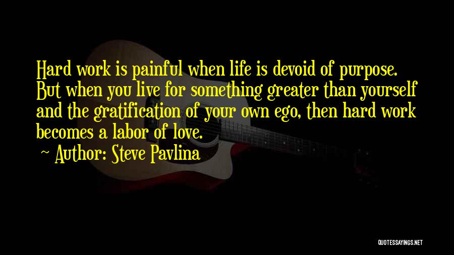 Love Is Hard Quotes By Steve Pavlina