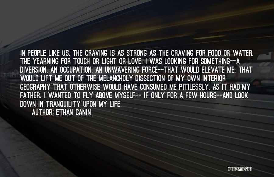 Love Is Like Water Quotes By Ethan Canin