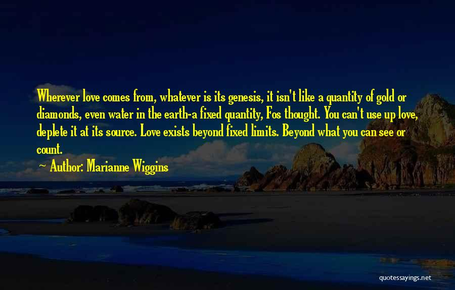 Love Is Like Water Quotes By Marianne Wiggins