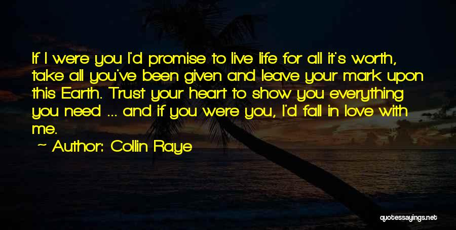 Love Is Worth The Fall Quotes By Collin Raye