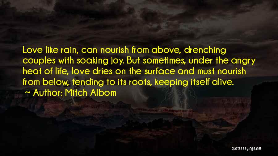 Love Lessons Quotes By Mitch Albom