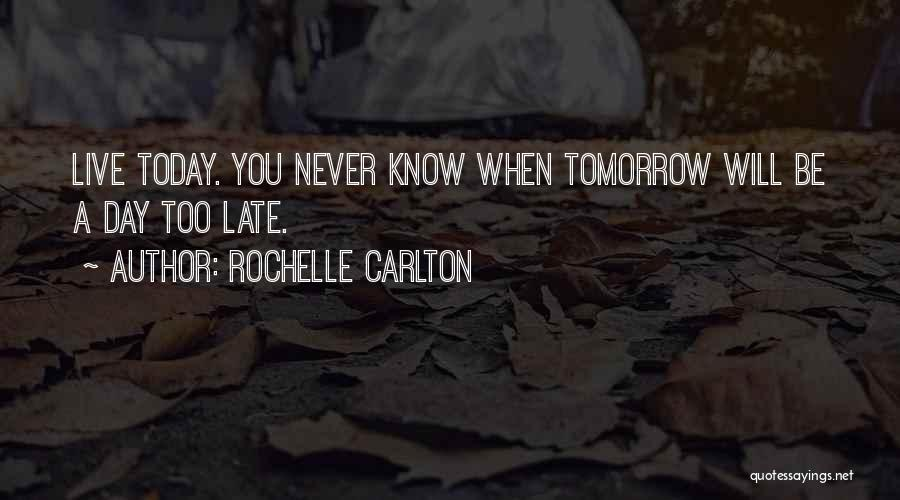 Love Lessons Quotes By Rochelle Carlton