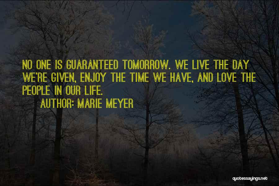 Love Life And Live Quotes By Marie Meyer