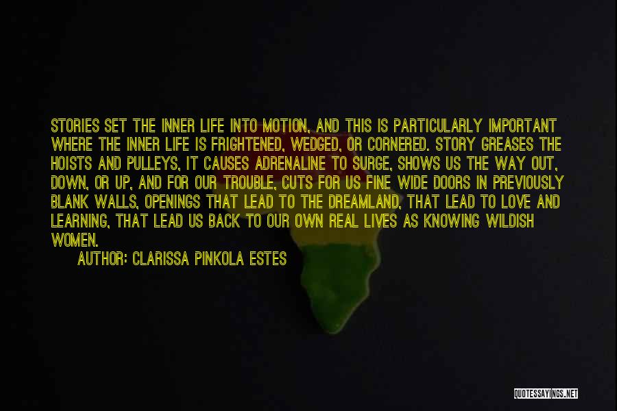 Love Life Learning Quotes By Clarissa Pinkola Estes