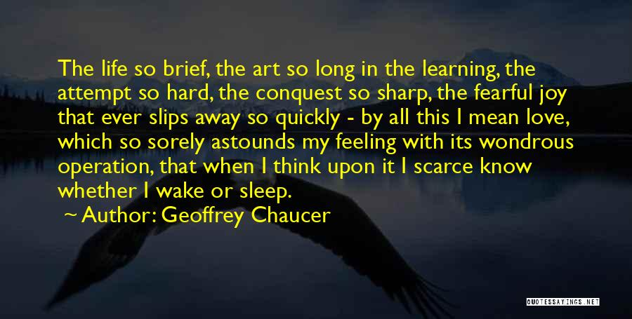 Love Life Learning Quotes By Geoffrey Chaucer