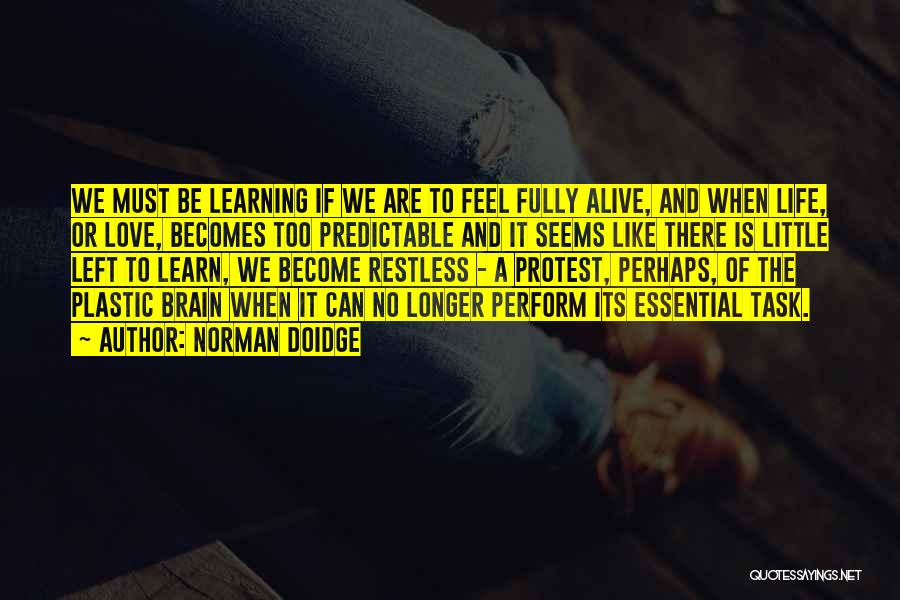 Love Life Learning Quotes By Norman Doidge