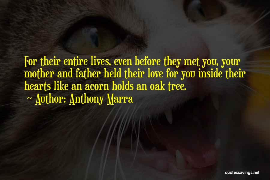 Love Like Tree Quotes By Anthony Marra