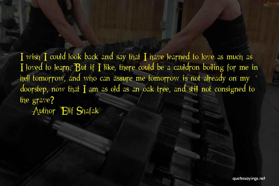 Love Like Tree Quotes By Elif Shafak