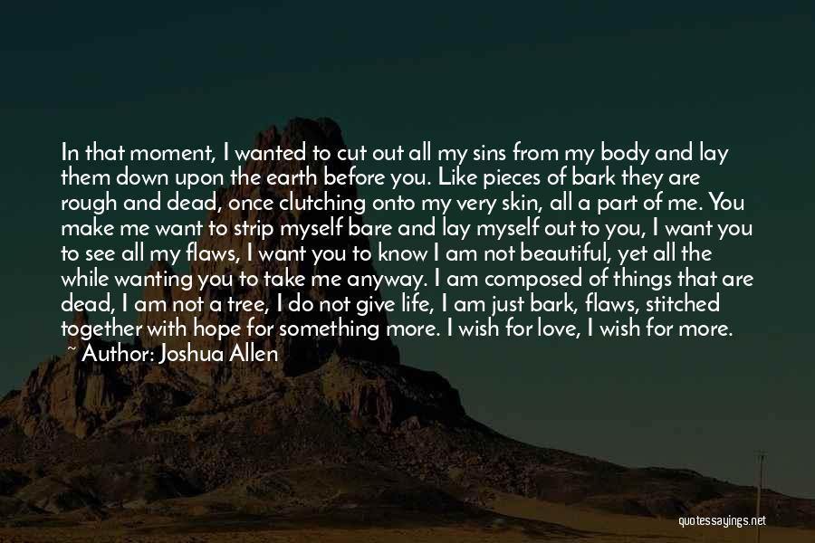 Love Me For My Flaws Quotes By Joshua Allen