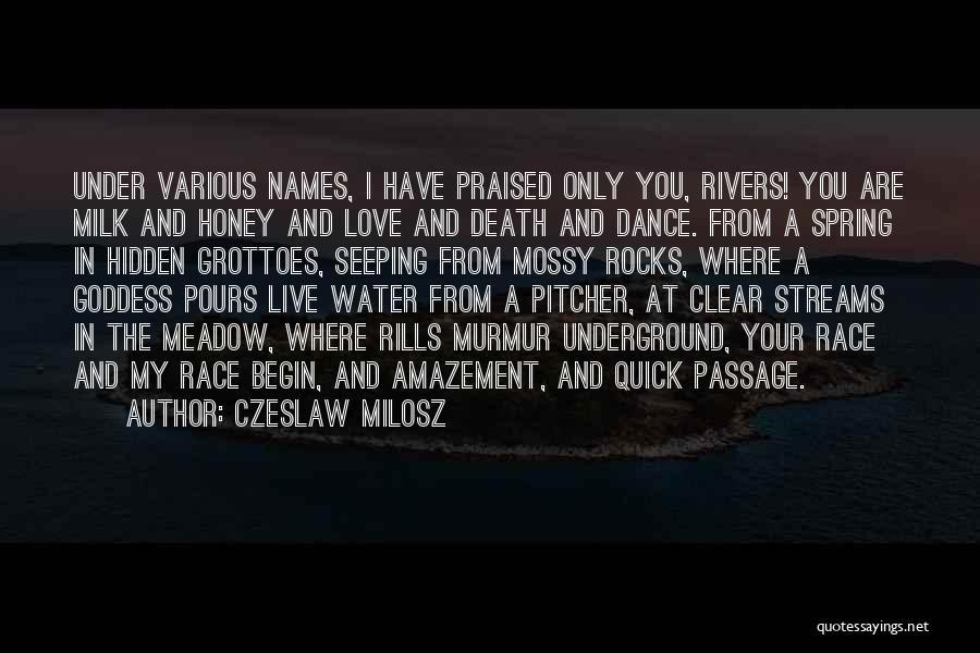 Love Meadow Quotes By Czeslaw Milosz