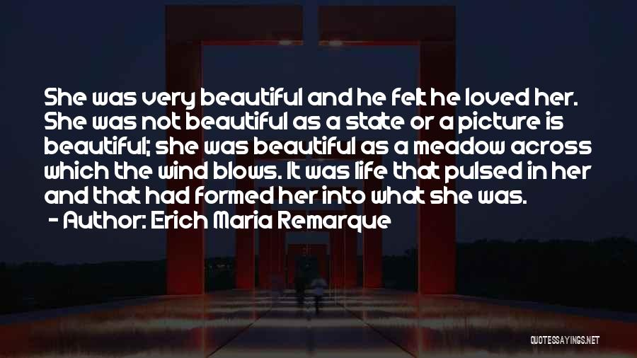 Love Meadow Quotes By Erich Maria Remarque