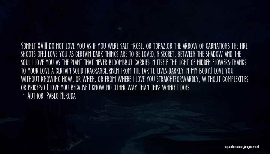 Love Never Exist Quotes By Pablo Neruda