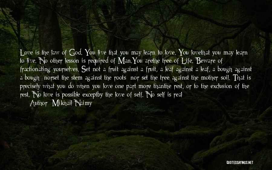Love Of Your Mother Quotes By Mikhail Naimy