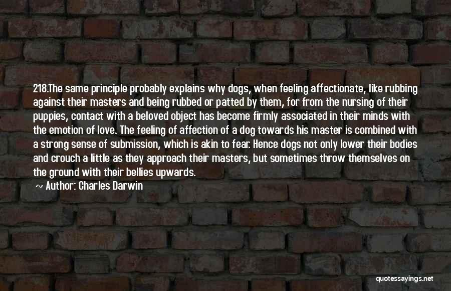 Love Probably Quotes By Charles Darwin